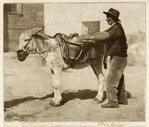 Aguador en Toledo. Foto de J. Craig Annan (1914)